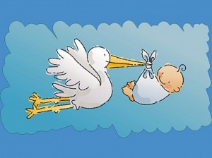 Cigüeña-y-bebé-9